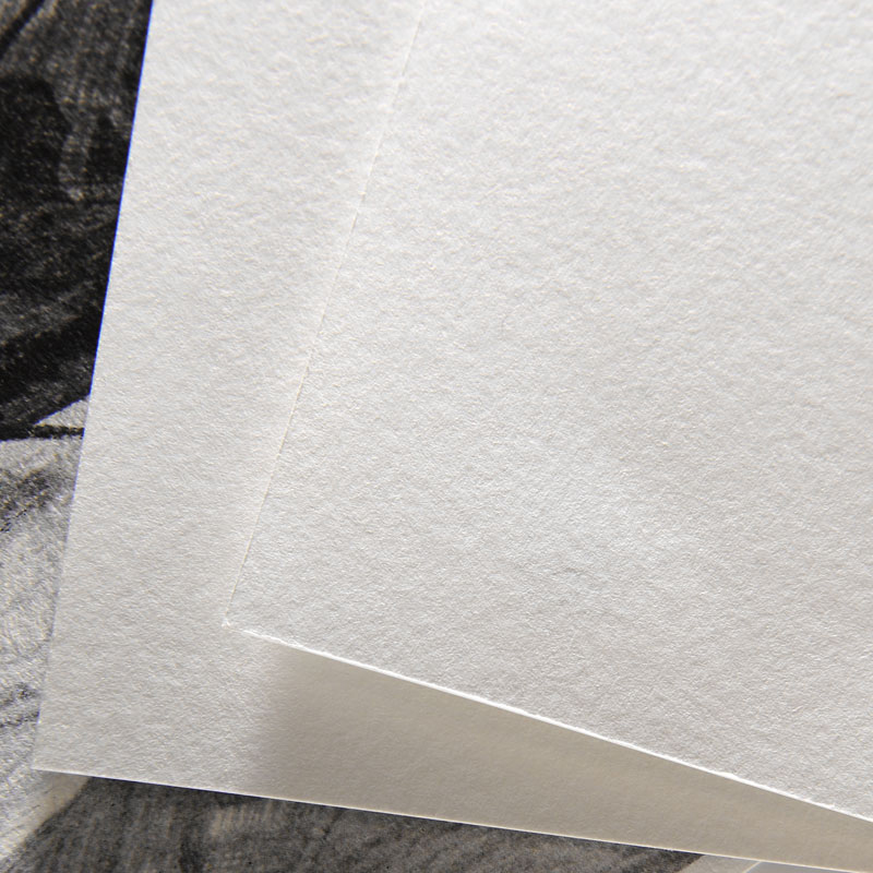 Papier Akwafortowy Canson Barbizon 250 gsm