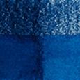 1000 Bright Blue