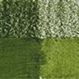 1550 Spring Green