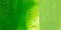 308 Bright Green s. B