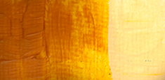 641 Golden Ochre s. B