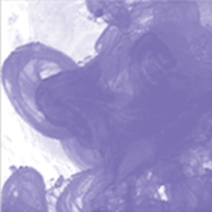 454 Velvet Violet