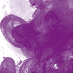 437 Purple Lake