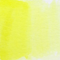 040 Lemon Yellow