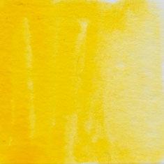 043 Mid Yellow