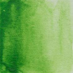 051 May Green