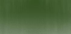 313 Chrome Green