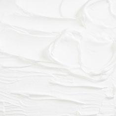 5301 Titanium White
