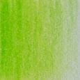 49 Grass Green