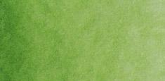 716 Sap Green