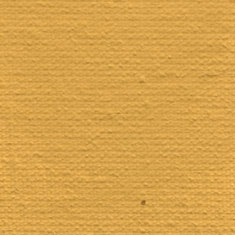 19 Ochra Żółta