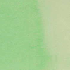666 Pastel Green