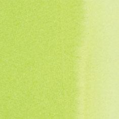 665 Spring Green