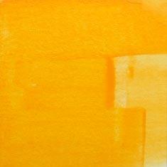 0225 Mango