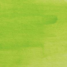 1570 Kiwi