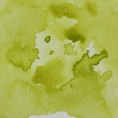048 Greenish Yellow