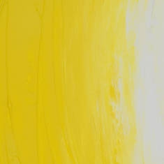 501 Lemon Yellow