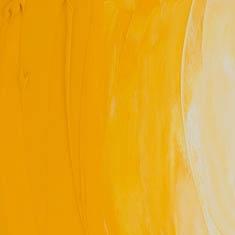 541Cadmium Yellow Medium Hue