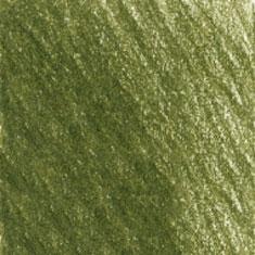 173 Olive Green Yellowish