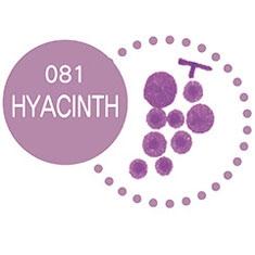 081 Hyacinth
