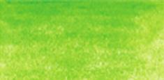 4800 May Green