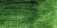 5000 Cedar Green