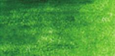 5110 Moss Green