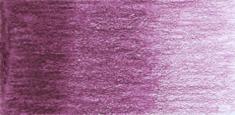 C240 Bright Purple