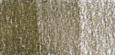TC15 Green Moss
