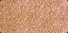 586 Glitter Gold