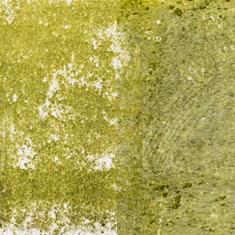 01 Olive Green