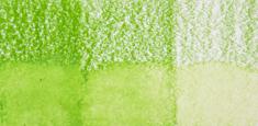 47 Grass Green