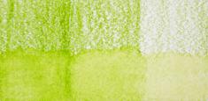 48 May Green