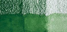 49 Sap Green