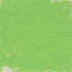 PASTELA SUCHA ARTYSTYCZNA 357-2 LIZARD GREEN   DALER-ROWNEY