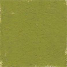 PASTELA SUCHA ARTYSTYCZNA 363-2 OLIVE GREEN   DALER-ROWNEY