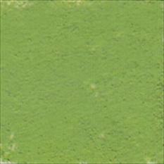PASTELA SUCHA ARTYSTYCZNA 375-2 SAP GREEN   DALER-ROWNEY