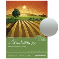 Blok Gamma Fabriano Accademia 32,5 x 45 cm 200 gsm 20 ark. A2003245k20